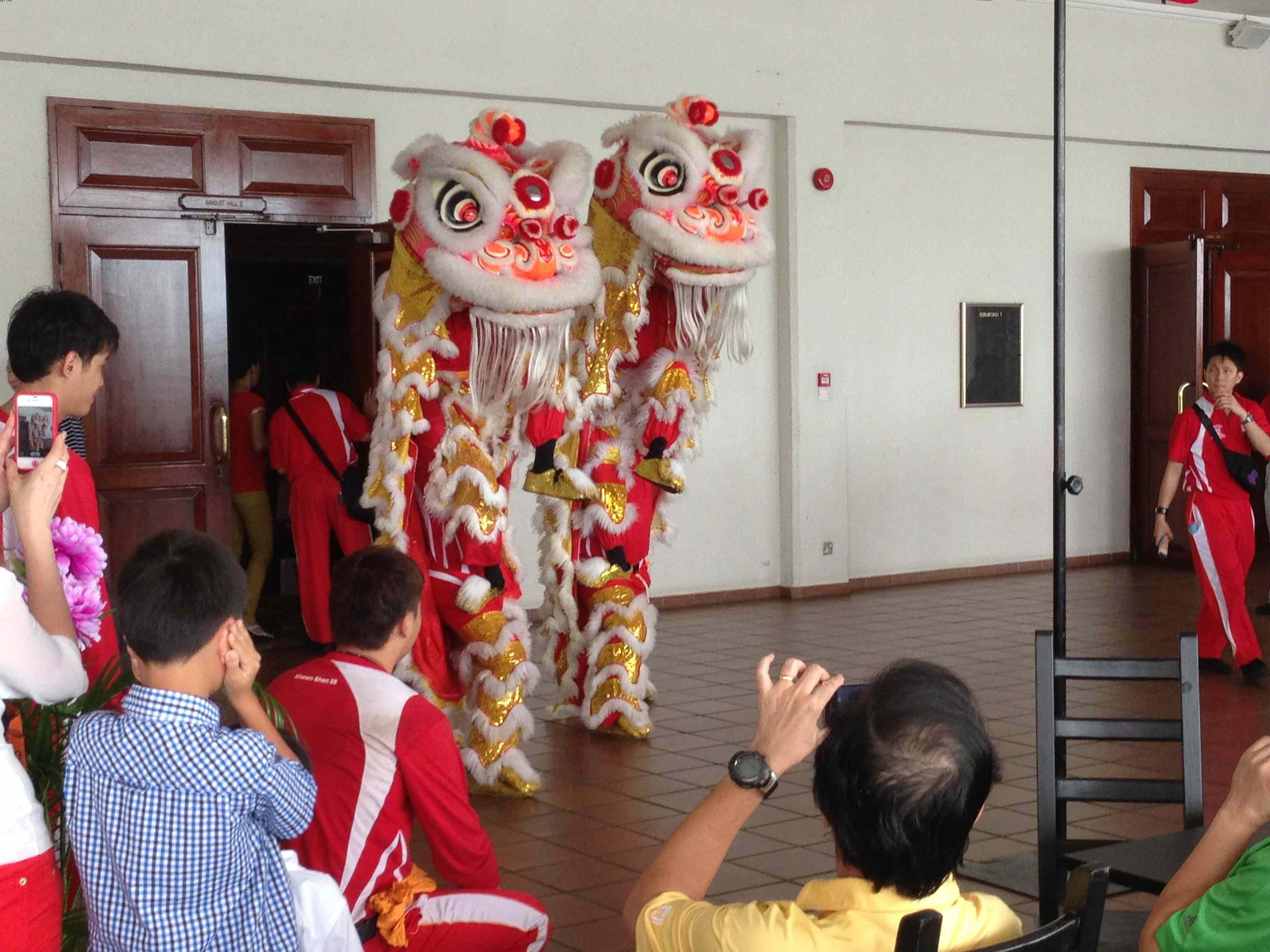 Lion Dance 1.