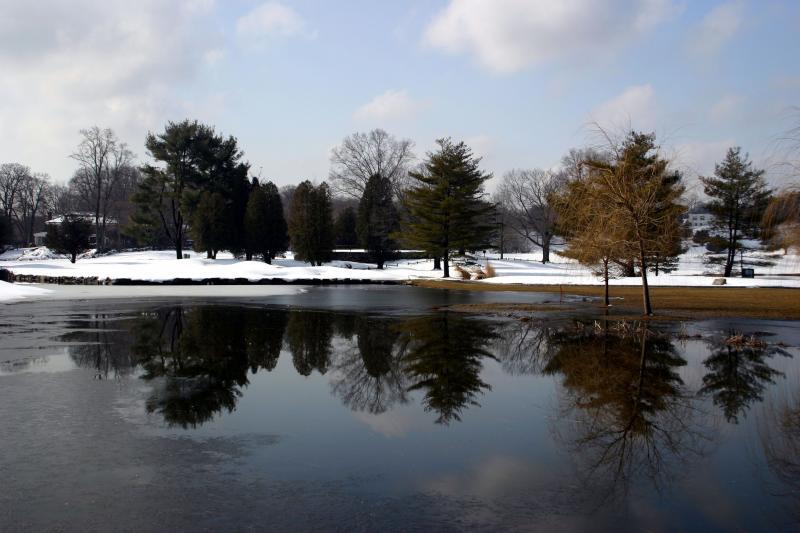 Willow Ridge Winter 008.