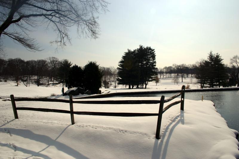 Willow Ridge Winter 019.